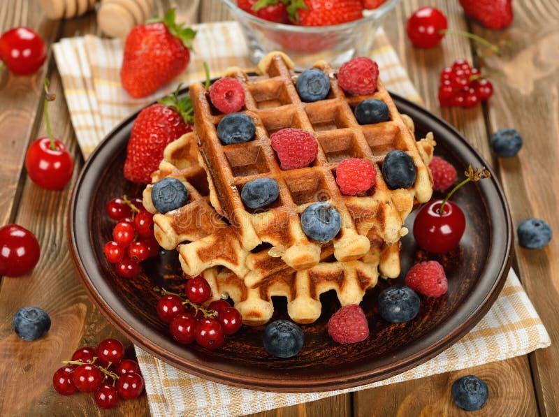 Waffles Liege ? ??????? стоковое фото