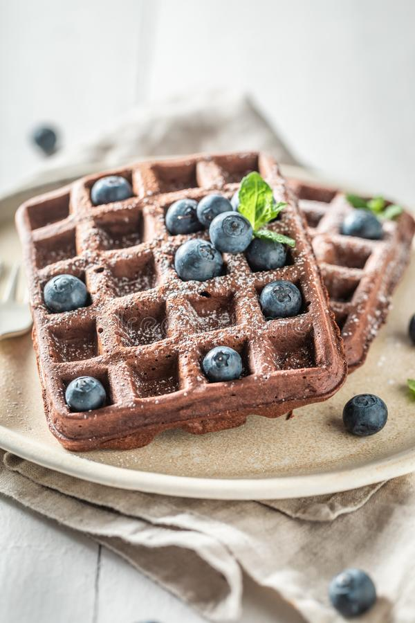 Waffles made of cocoa with berry fruits royalty free stock photography