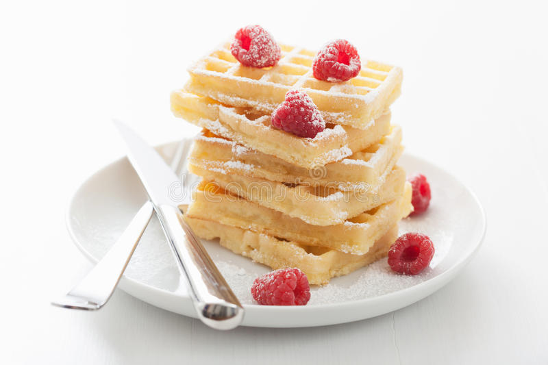 Waffles with raspberry and icing sugar. Waffles with raspberries and icing sugar stock photos