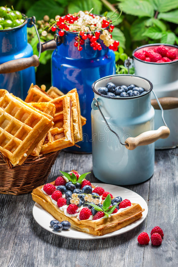 Waffles with whipped cream and berry fruit stock photography