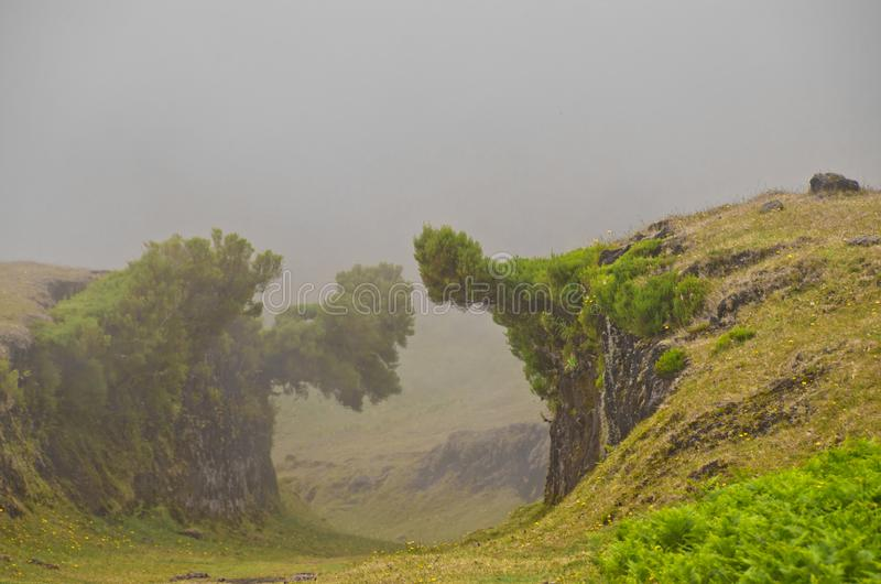 Wafts of mist are laying upon the highland of Madeira and generate a spooky athmosphere. Wafts of mist are laying upon the highland of Madeira into a defile and royalty free stock photos
