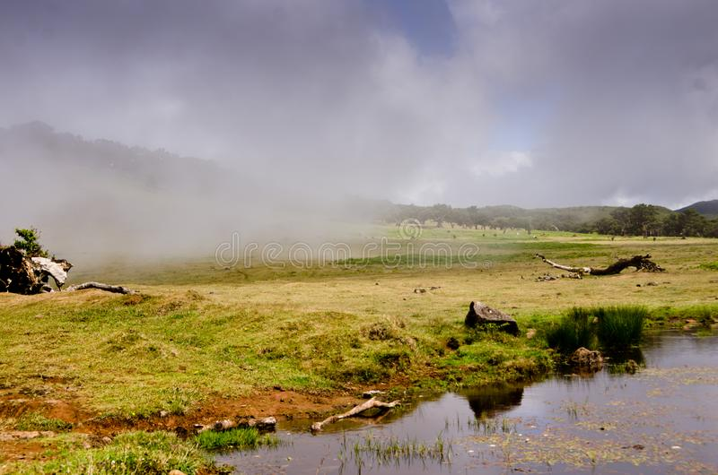 Wafts of mist are laying upon the highland of Madeira and generate a spooky athmosphere.  stock photos