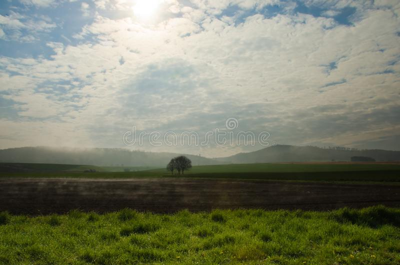 Wafts of mist are rising upon the highland and generate rate a mystical atmosphere. Wafts of mist are rising upon the highland into a defile and generate a royalty free stock photo
