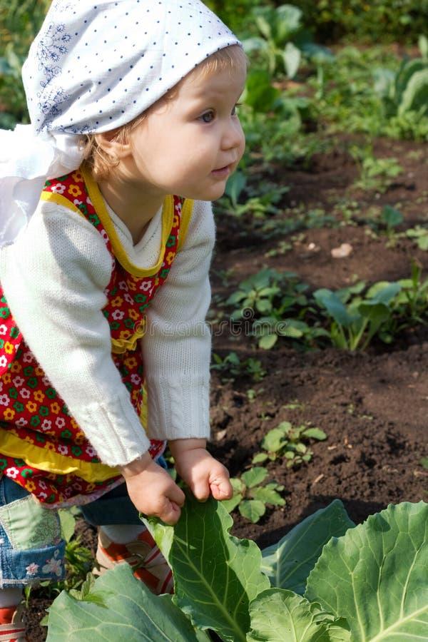 wagę rolników young obrazy royalty free