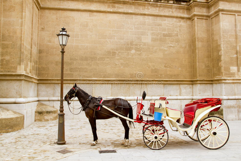 Wagen mit Pferd in der Majorca Kathedrale in Palma stockbild