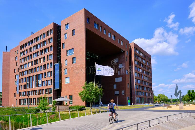 Wageningen, the Netherlands, May 26,2020:Forum at Wageningen Campus in Sunshine, with flag and cyclist. Wageningen, the Netherlands, May 26,2020:Forum at royalty free stock images