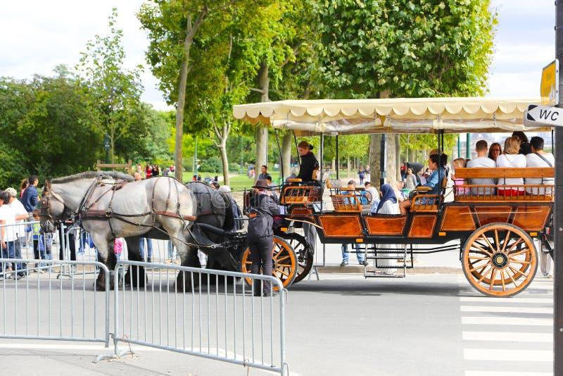 Wagenpferde - Paris lizenzfreie stockfotografie