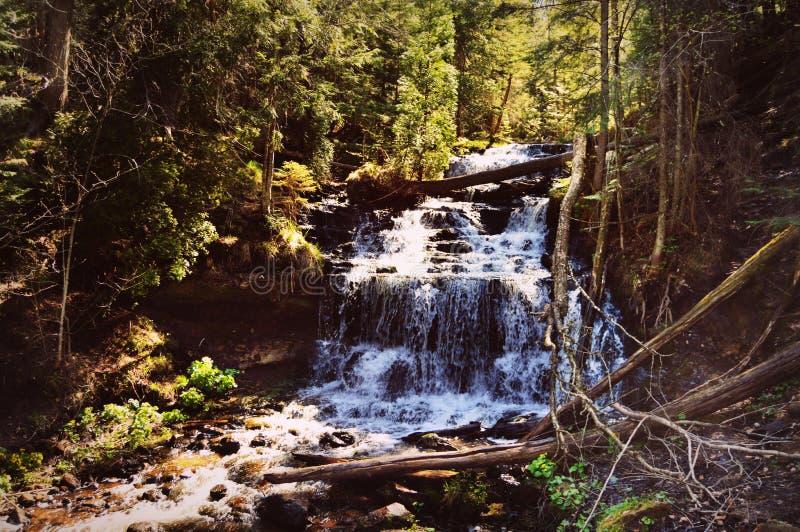 Wagner Falls royalty free stock photos