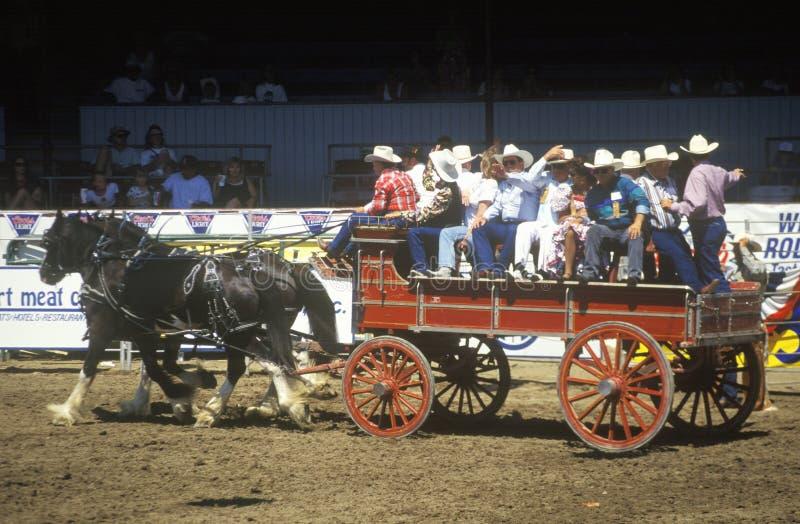 Wagon de train, rodéo de fiesta, concours hippique courant, Earl Warren Showgrounds, Santa Barbara, CA photographie stock