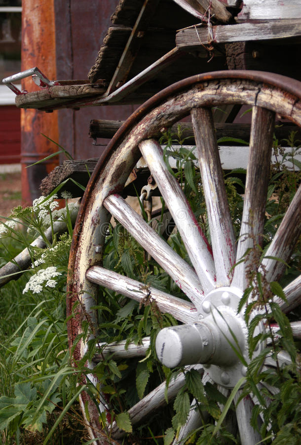 Free Wagon Wheel And Flowers Royalty Free Stock Photos - 9908288