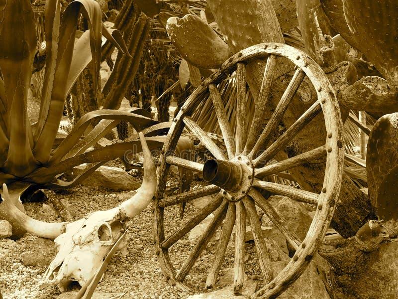 Wagon Wheel With Buffalo Skull And Cacti royalty free stock images