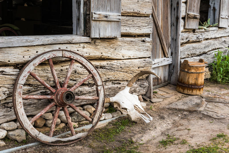 Wagon Wheel and Cow Skull. Next to an old barn. Wooden bucket in the background stock photos