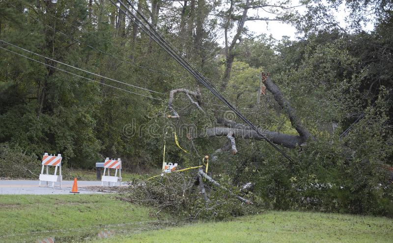 Power lines down in Wagram North Carolina after Hurricane Florence. Wagram, North Carolina, United States/September 18, 2018: Power line that went down during stock images