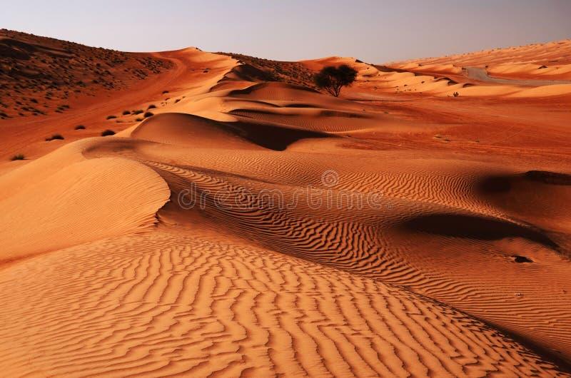 Wahibawoestijn in Oman, het Nabije Oosten stock afbeeldingen