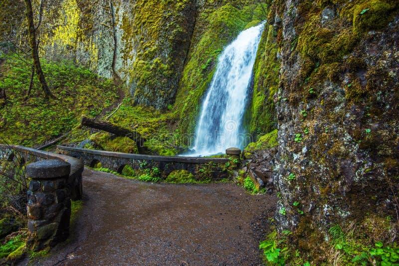 Wahkeena faller Oregon royaltyfri bild