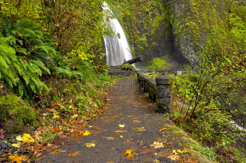 Wahkeena Falls Oregon And Foot Path Royalty Free Stock Photo