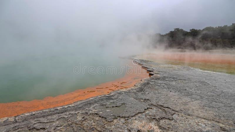 Wai-O-Tapu香宾水池在罗托路亚,新西兰 免版税库存照片