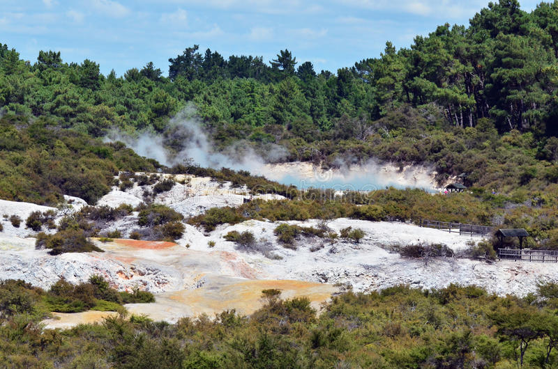 Wai-O-Tapu, Rotorua, Nueva Zelandia fotos de archivo libres de regalías