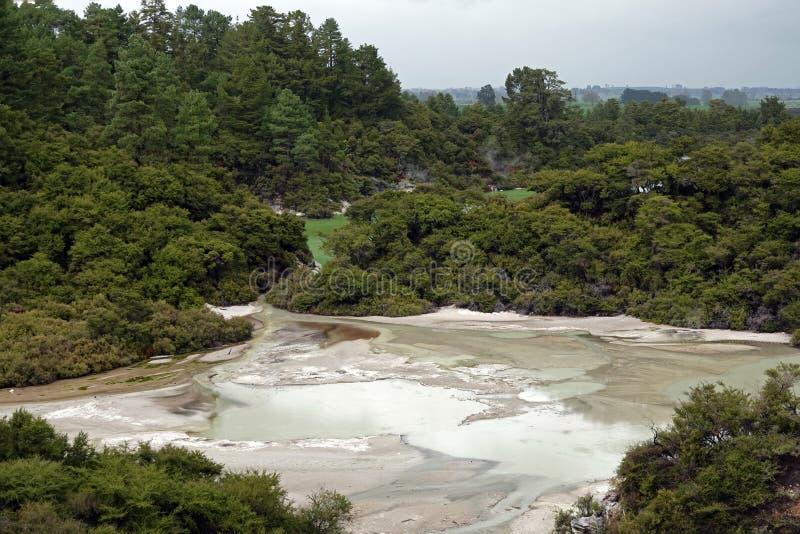 Wai-O-Tapu sjö Ngakoro i Rotorua, Nya Zeeland arkivfoton