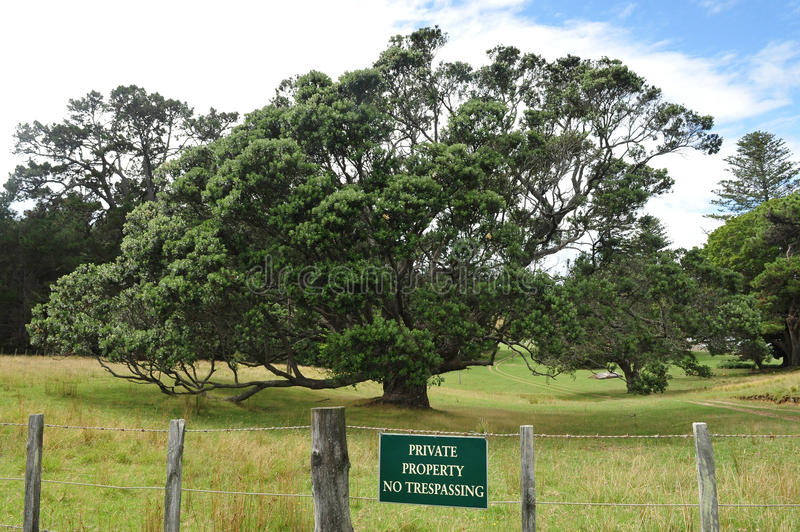 Waiheke wyspa Nowa Zelandia zdjęcia royalty free