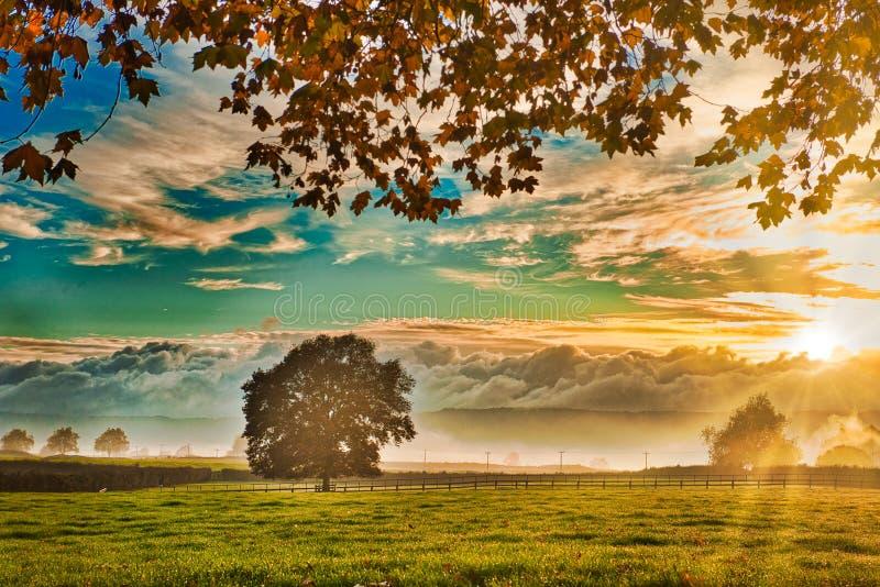 Waikato-Sonnenaufgang 2 stockbilder