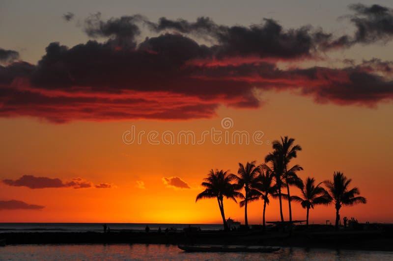 waikiki захода солнца пляжа стоковые изображения rf