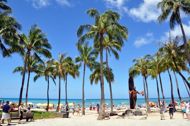 Download Waikiki beach editorial photography. Image of oahu, flowers - 18646707