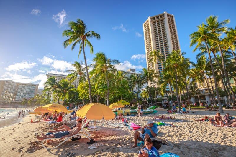 Waikiki beach sunbathing stock photos