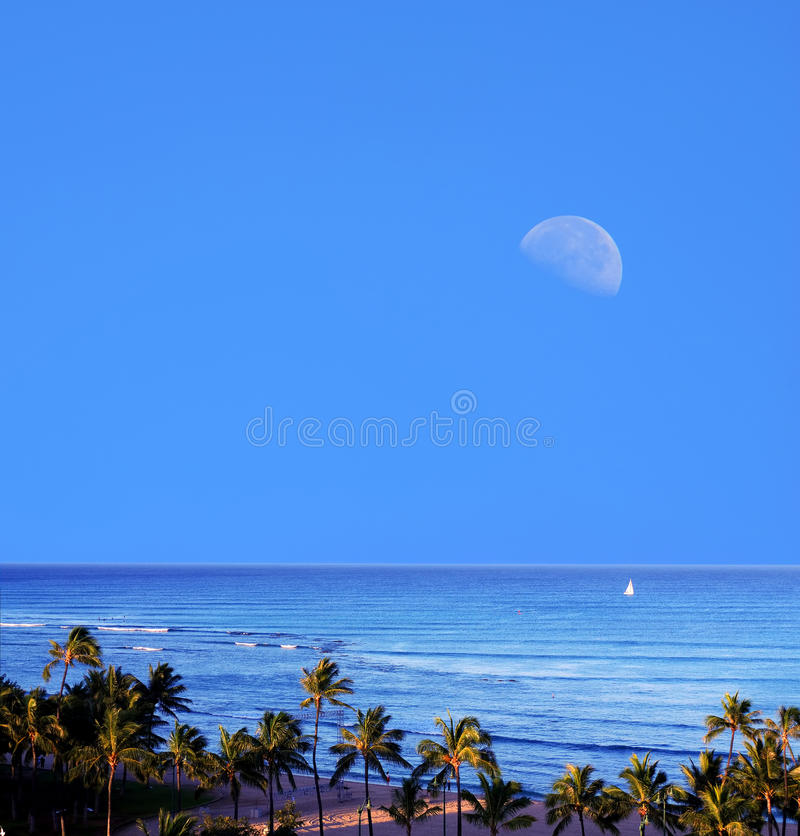 Waikiki-Moonrise Honolulu Hawaii stockbild