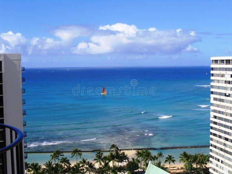 Waikiki Sailboat Free Stock Photo