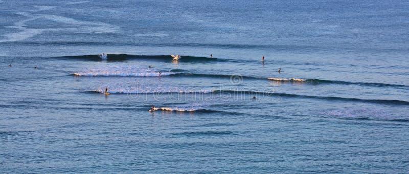 Waikiki-Schwimmen lizenzfreie stockfotografie