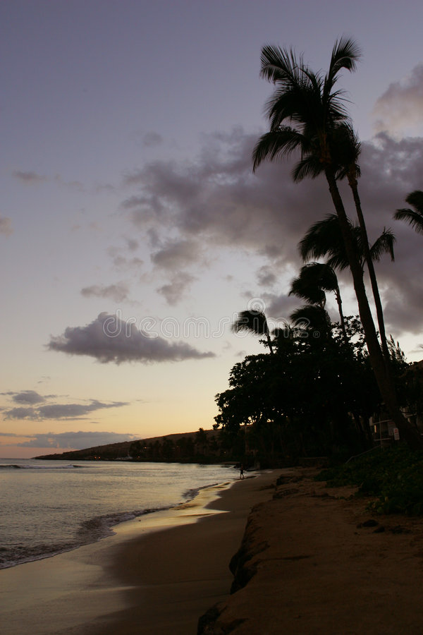 WaiKiKi, spiaggia dell'Hawai fotografia stock