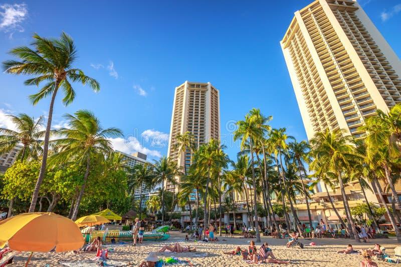 Waikiki strand Oahu royaltyfri bild