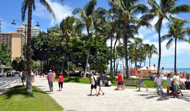 Waikiki strand, Oahu, Hawaii fotografering för bildbyråer