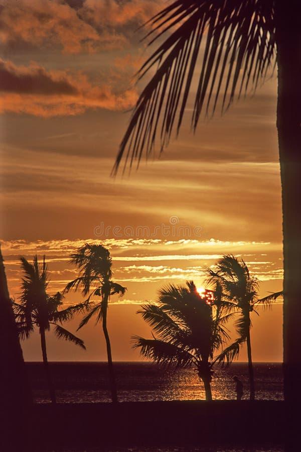 Free Waikoloa Sunset-3 Royalty Free Stock Photos - 7957758