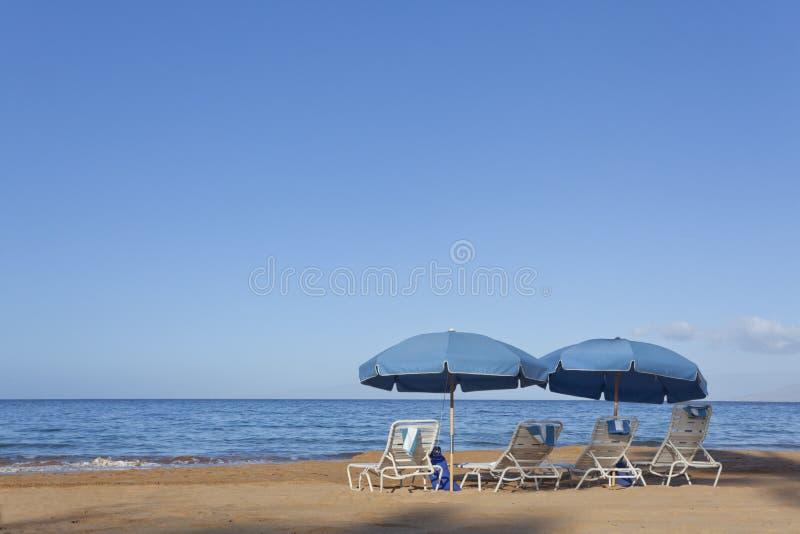 Download Wailea Beach stock image. Image of tropical, sand, waves - 23848097
