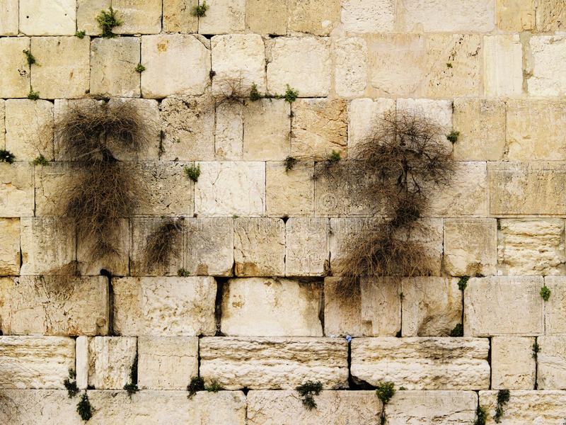Download Wailing Wall stock image. Image of holy, east, mosque - 26452065