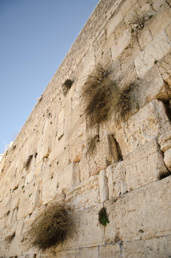 Download Wailing Wall in Jerusalem stock photo. Image of jerusalem - 28446146