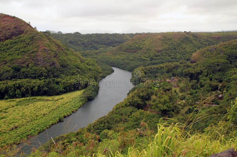 Wailua River Valley stockbilder