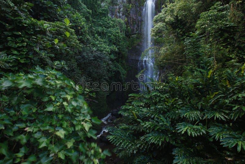 Wailuadalingen, Weg aan Hana Maui, HALLO stock afbeelding