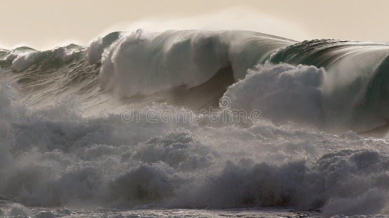 Waimea海湾巨型的北部岸风暴海浪 免版税库存图片