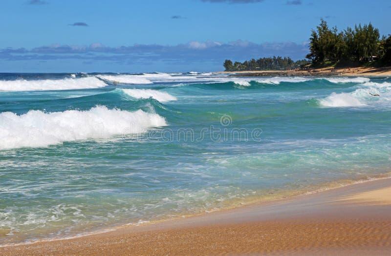 Waimea Bay. Landscape in Waimea Bay - Oahu, Hawaii stock image