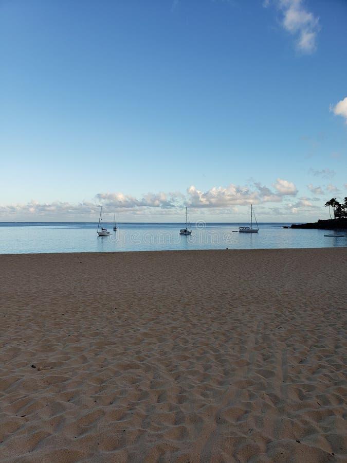Waimea Bay Hawaii. Beach, sailboat, ocean stock photo