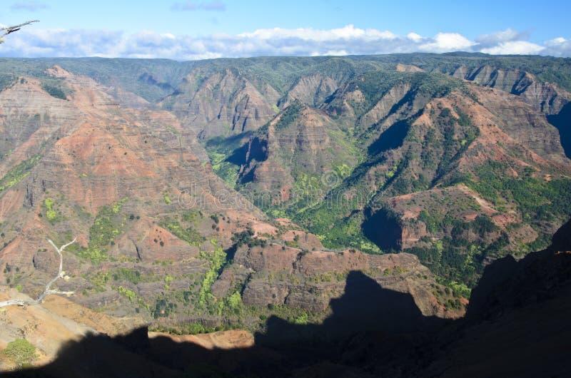 Download Waimea Canyon stock photo. Image of america, hawaii, waimea - 22304068