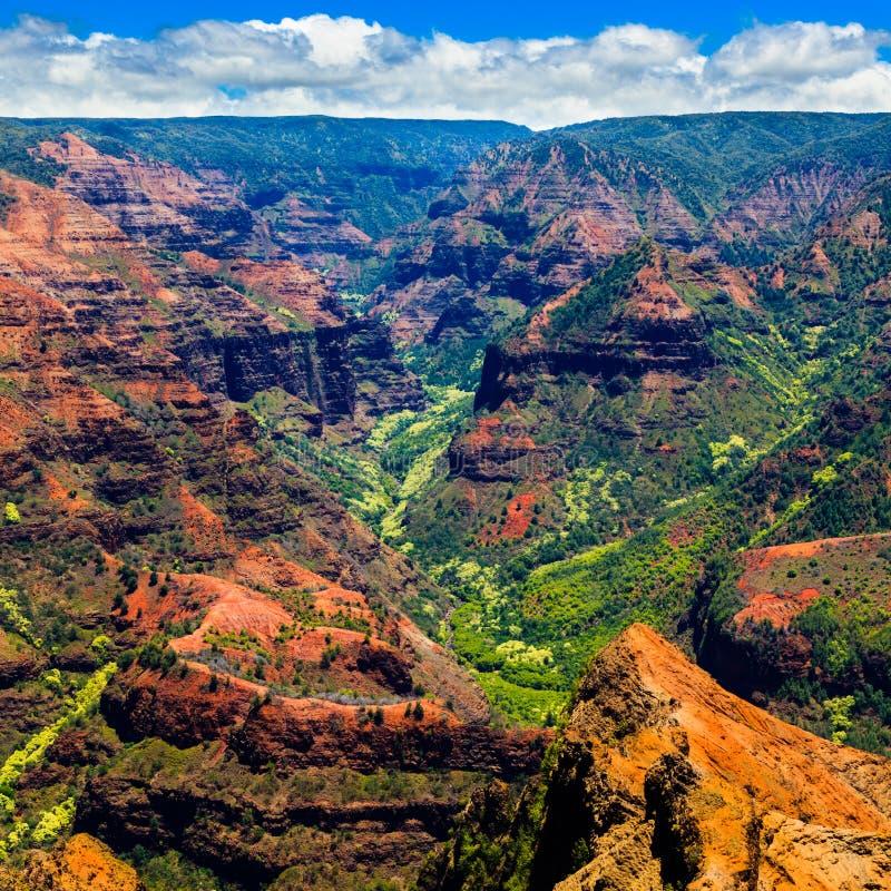 Waimea Canyon royalty free stock photography