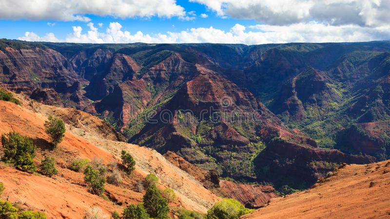 Waimea Canyon Panorama royalty free stock photos