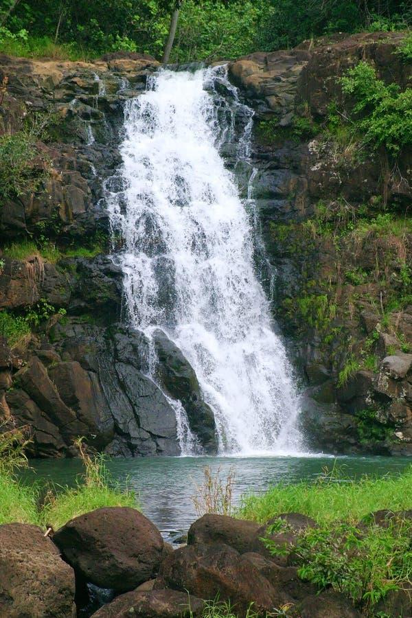 Waimea Falls Waterfall in Hawaii royalty free stock images