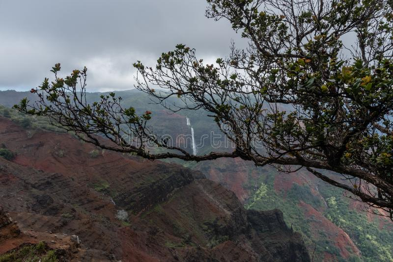 Waimea-Schlucht auf Kauai, Hawaii, im Winter nach einem bedeutenden Regensturm lizenzfreie stockfotografie