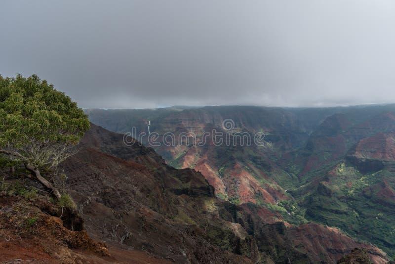 Waimea-Schlucht auf Kauai, Hawaii, im Winter nach einem bedeutenden Regensturm lizenzfreie stockfotos