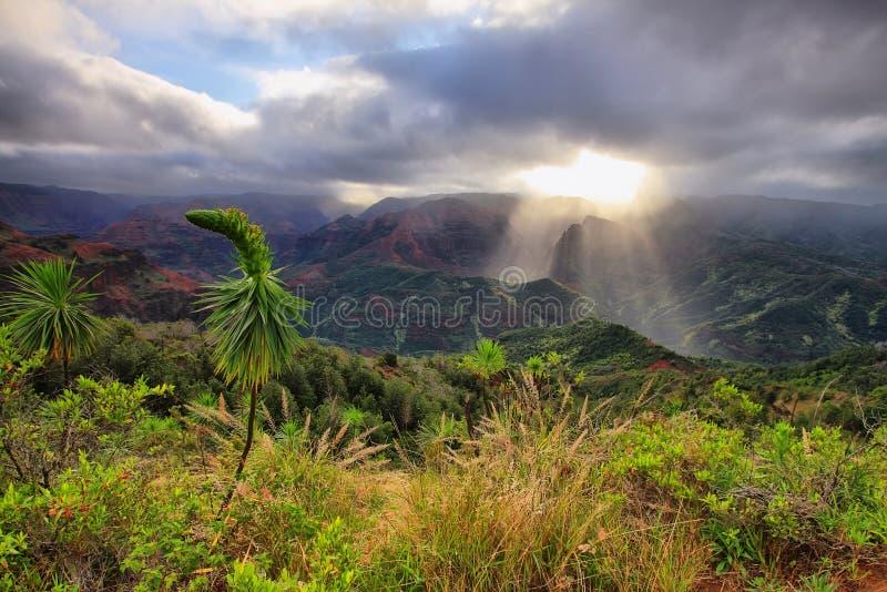 Waimea-Schlucht in Kauai, Hawaii-Inseln. stockfotos